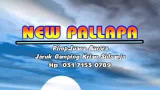 turu-nang-dadane-new-pallapa