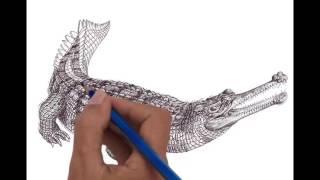 Crocodile - Senyulong movement and expression