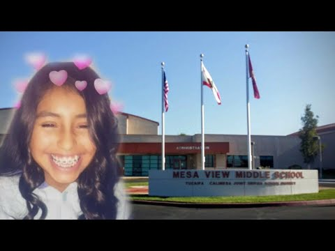 Bullied 13-Year-Old's Organs to be Donated Following Suicide