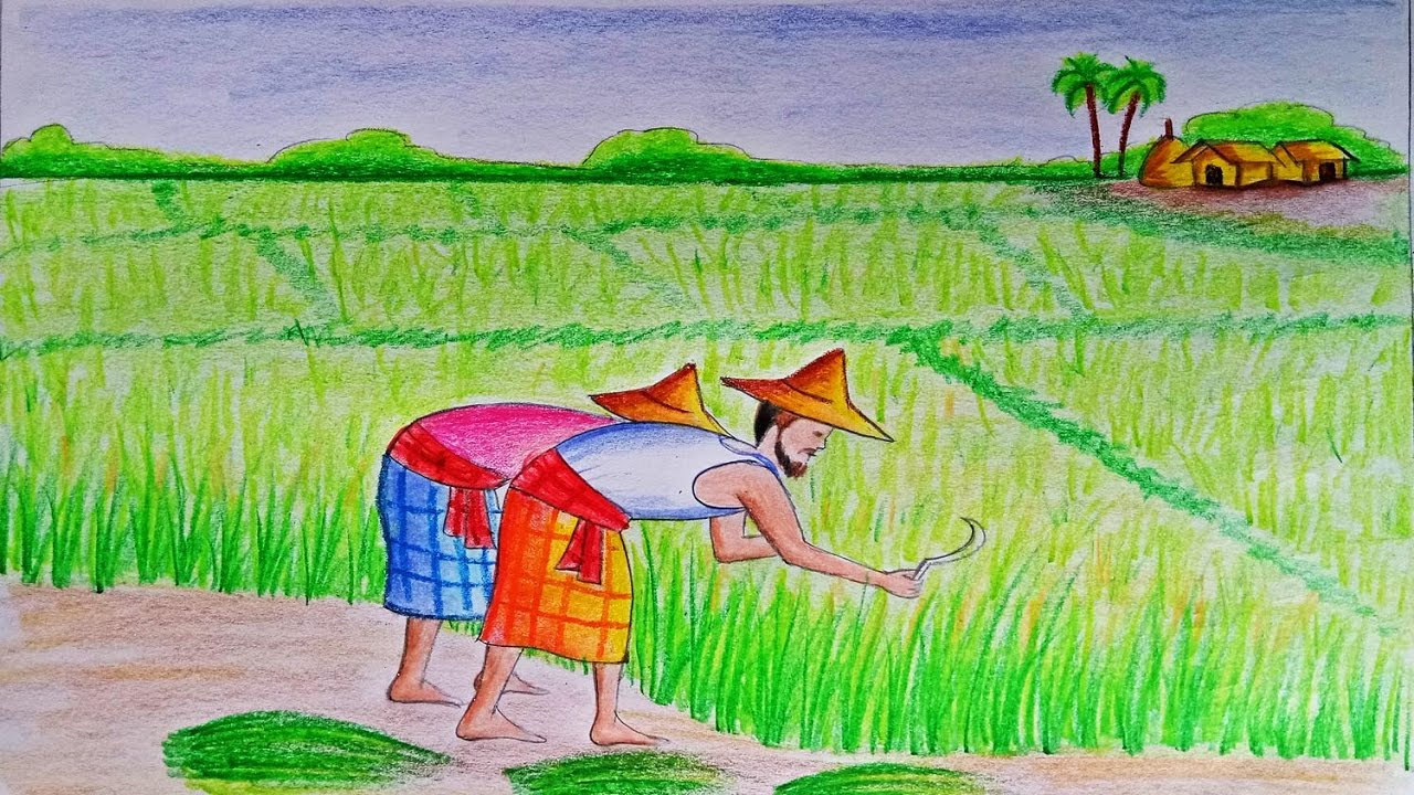 How to draw a scenery of cultivation step by step very easy farjana drawing academy
