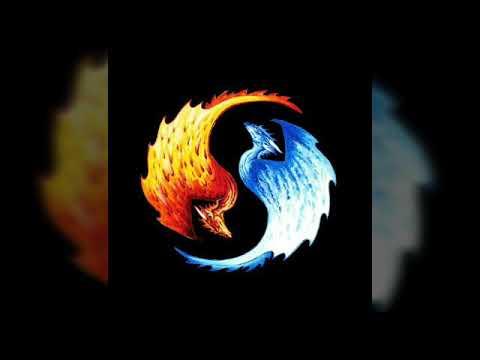 Fotos               El ying y el yang
