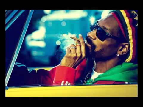 Snoop Dogg - The next episode (smoke weed everyday orginal)
