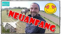 NEUANFANG - Erste Bilder :)) | Pferde Hoschi