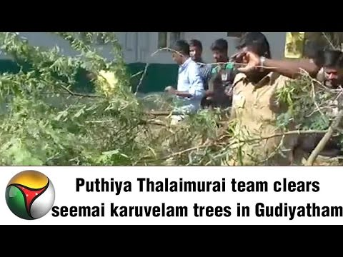 Puthiya Thalaimurai team clears seemai karuvelam trees in Gudiyatham
