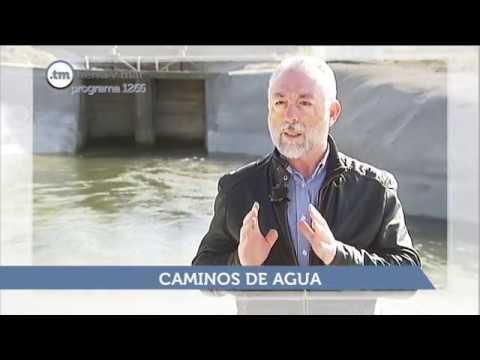 SUMARIO TIERRA Y MAR - PROGRAMA 1266  - Emisión 5.5.19