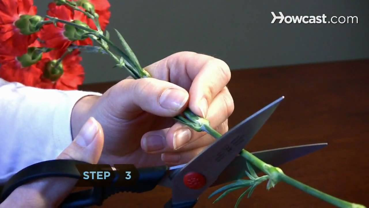 How To Dry Flowers Youtube