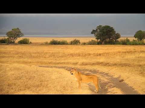 Abercrombie & Kent: Luxury Safari, Ngorongoro Crater, Tanzania