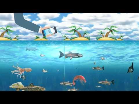 Yoursfish - Online Fresh Fish