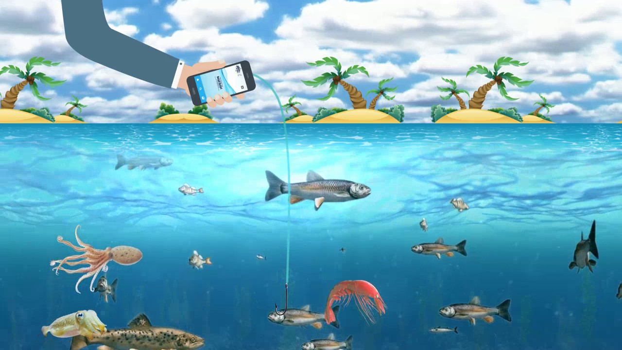 Yoursfish online fresh fish youtube for Fresh fish online