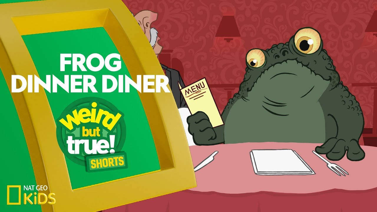 Frog Dinner Diner | Weird But True! Shorts
