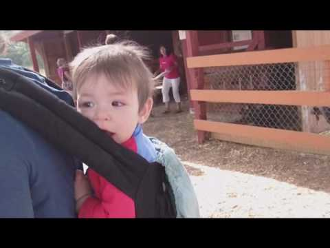 Miles in an ergo baby carrier