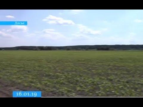 ТРК ВіККА: Черкаська ОТГ першою розпочала продаж прав оренди землі через електронний аукціон