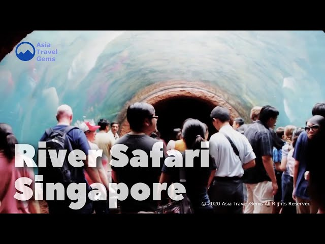 River Safari - Singapore's First and Only River Themed Wildlife Park in Asia