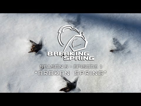 Turkey Hunting In The Snow - Breaking Spring
