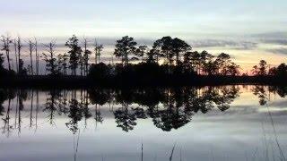 Black Water Wildlife Refuge.
