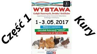 Wystawa Gołębi Rasowych, Drobiu i Królików Gaszowice 2017 część 1 Kury