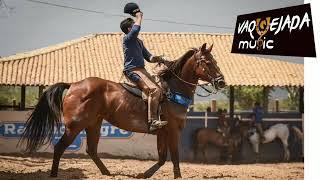 новые видео канала Cavalos E Frases смотреть онлайн