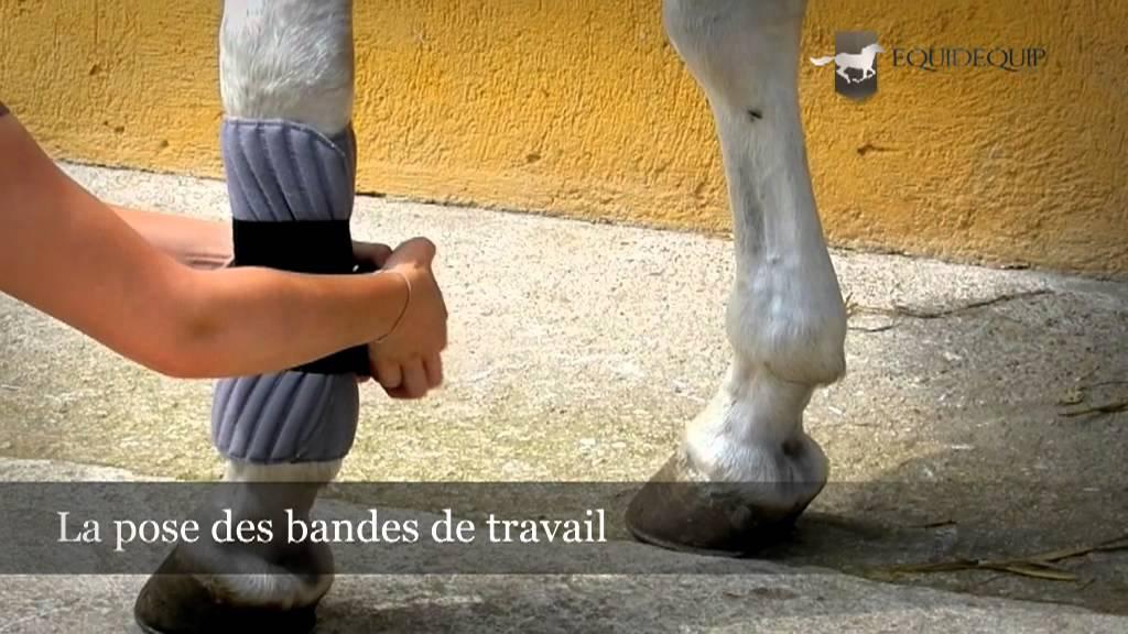 Equitation - La pose des bandes de travail - YouTube