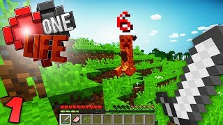 HOW LONG WILL I SURVIVE? Minecraft One Life SMP EP1