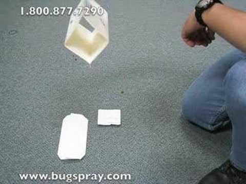 Bullet Lure Trap Setup