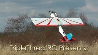 48 SPAD Combat Plane  - Yardwaste