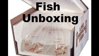 CRAZY FISH UNBOXING VIDEO