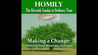 Homily , Eleventh Sunday in Ordinary 2021
