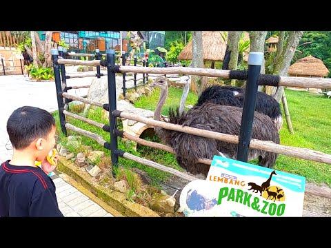 visit-lembang-park-and-zoo-bandung-pas-pulang-tiketnya-bisa-tuker-snack-sekantong