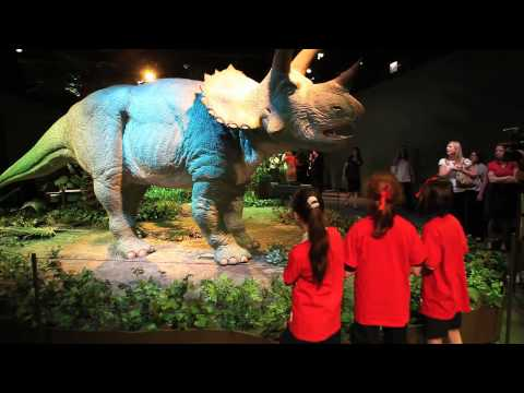 Robotic dinosaurs go wild at Field Museum