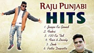 Raju Punjabi Hit Songs Latest DJ Song VR Bros Latest Song Mor Music