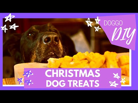 christmas-dog-treats:-butternut-coconut-dog-cookies-|-easy-and-yummy-homemade-silicone-mold-recipe