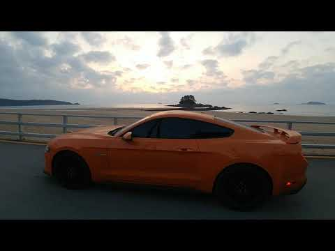Feat Mustang in the evening glow of Hakampo Beach in Taean, South Korea