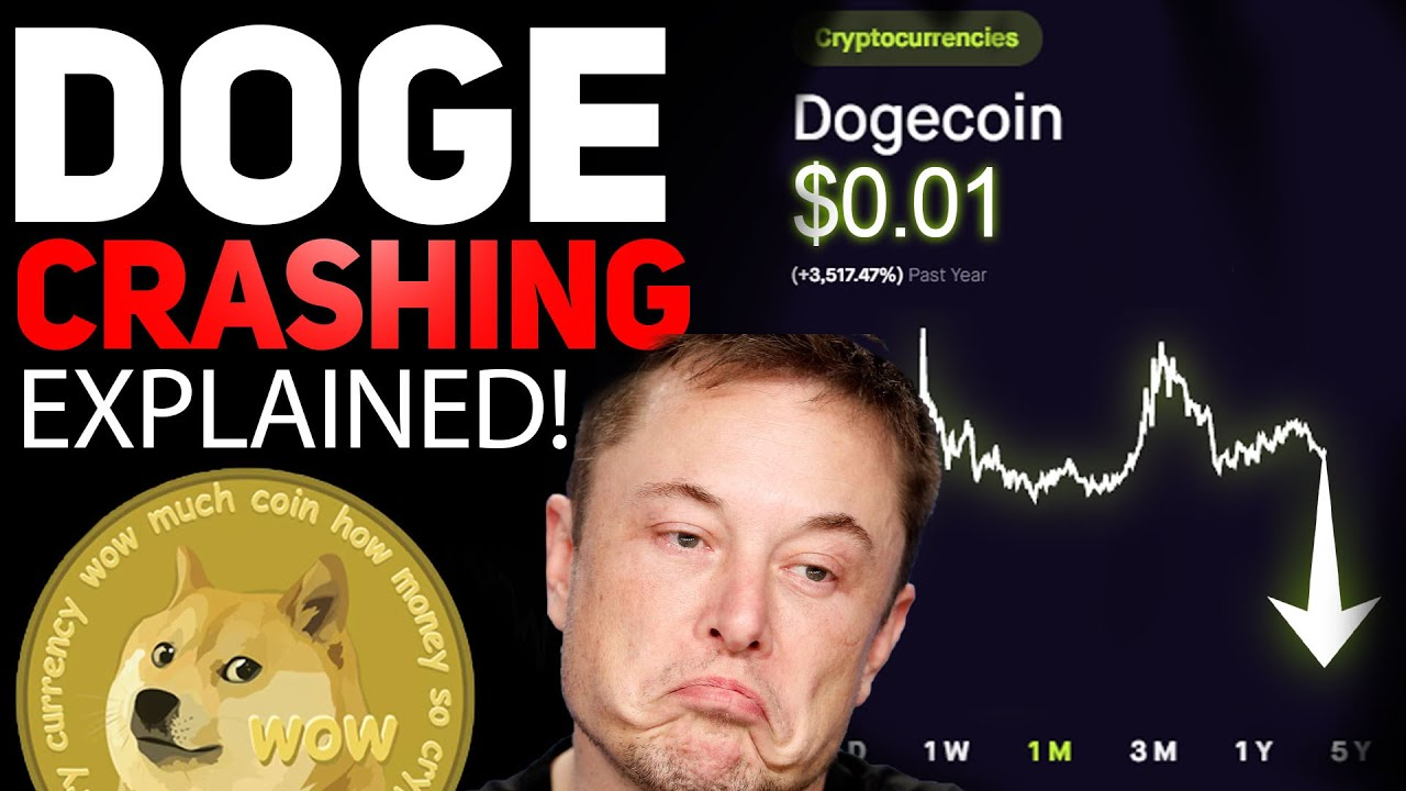 DOGECOIN IS CRASHING! HERES WHY ITS GOING DOWN!ALL HOLDERS ...
