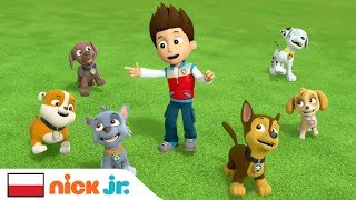 Psi Patrol | Teledysk - Piosenka Przyjaźni | Nick Jr. Polska