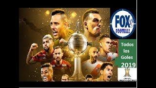 Todos los Goles de la Copa Libertadores 2019 | All Copa Libertadores Goals 2019