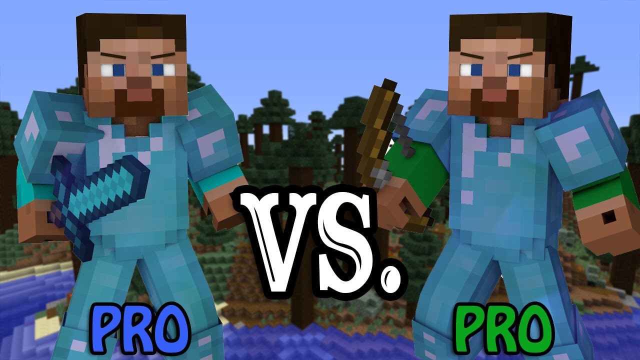 pro vs pro minecraft