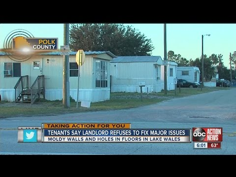 Tenants at mobile home park surrounded by moldy walls, raw sewage, while landlord lives in luxury