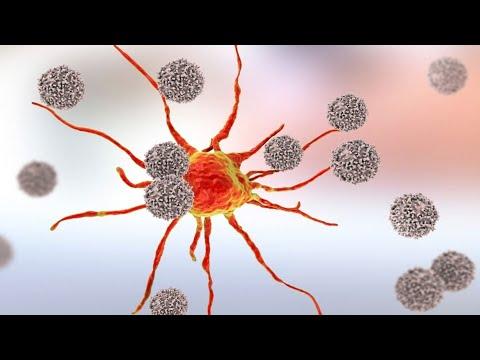 La respuesta inmunitaria contra el cáncer. Conferencia del Dr. Peter Taylor.
