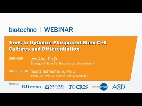 Get the Most Out of Your Cells: Tools to Optimize Pluripotent Stem Cell Cultures and Differentiation