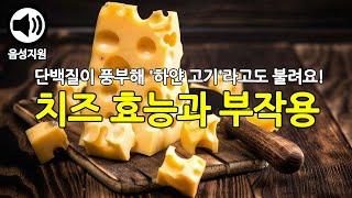 칼슘과 단백질이 풍부한 치즈의 효능과 부작용