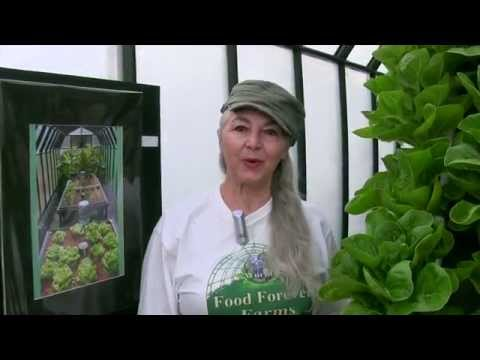 Food Forever™ Micro Farm Update, 22 August 2014