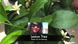 Lemon Tree - My Ukulele Interpretation