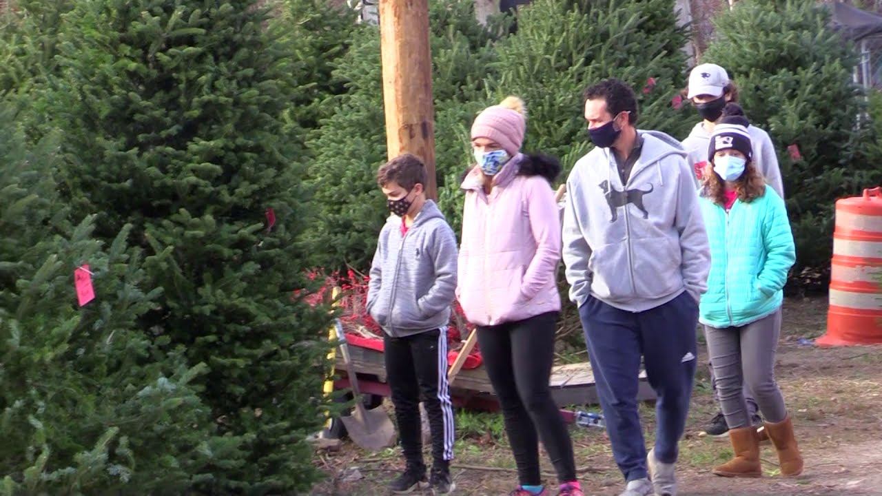 Christmas Tree Sales up Amid Pandemic