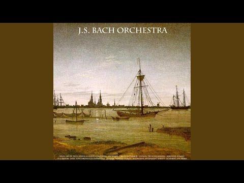 Violin Concerto in A Minor, No. 1, BWV 1041: III. Allegro assai