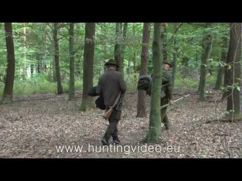 Red Stag Hunting In Hungary Kustánszeg (HD)