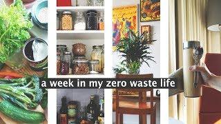 A WEEK IN MY ZERO WASTE LIFE // habits & routines vol. II