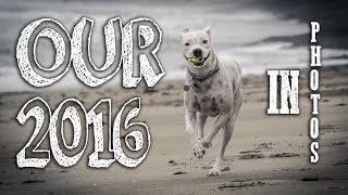 Our Airstream Life 2016 in Pictures Happy New Year