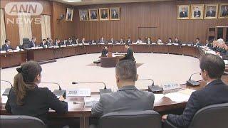憲法改正の議論進むか 憲法審2年ぶり自由討議(19/11/07)
