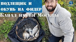 Фидер на канале им Москвы осенью. Рыбалка с бородачами. Vlog#11