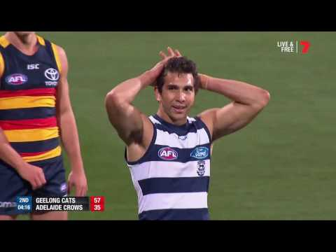 Don't argue with Cockatoo - AFL